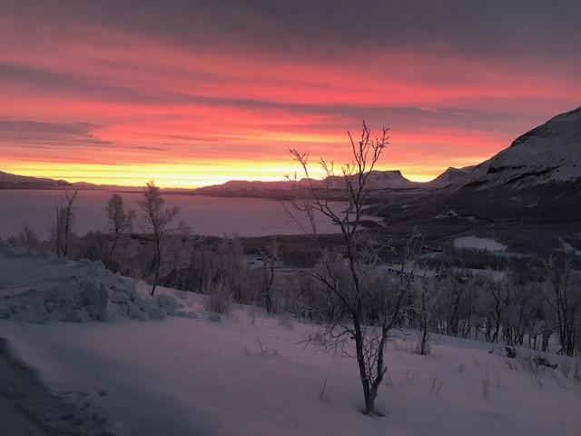 Lapland 11