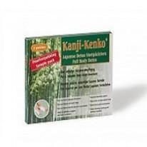 kanji-kenko-detox-voetpleisters-trial-size-detoxif