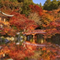 Japan Tenzing 1